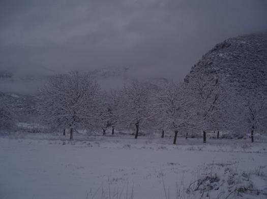 Η θέα από το μελισσοκομείο μας το χειμώνα του 2011 !