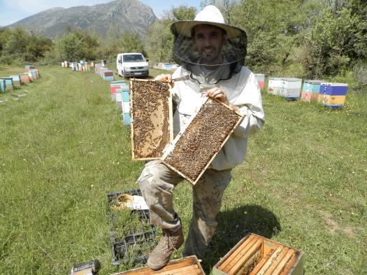 Ένα από τα μελισσοκομεία μου τον Απρίλιο στην Κλειτορία.