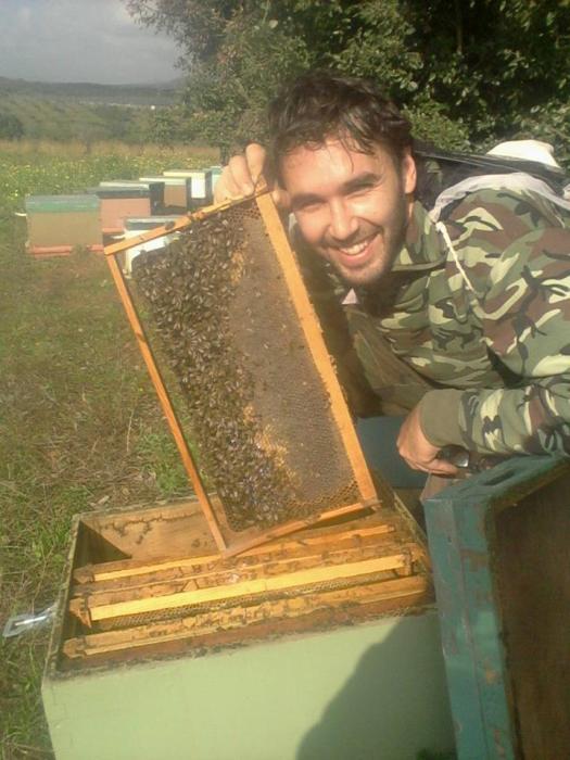 Πλαίσιο γεμάτο με μέλι κουμαριάς! Ιανουάριος 2014.